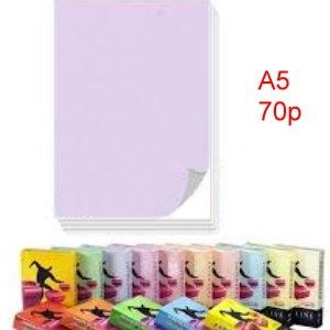 70g彩色影印紙 A5-PL1(淺色)